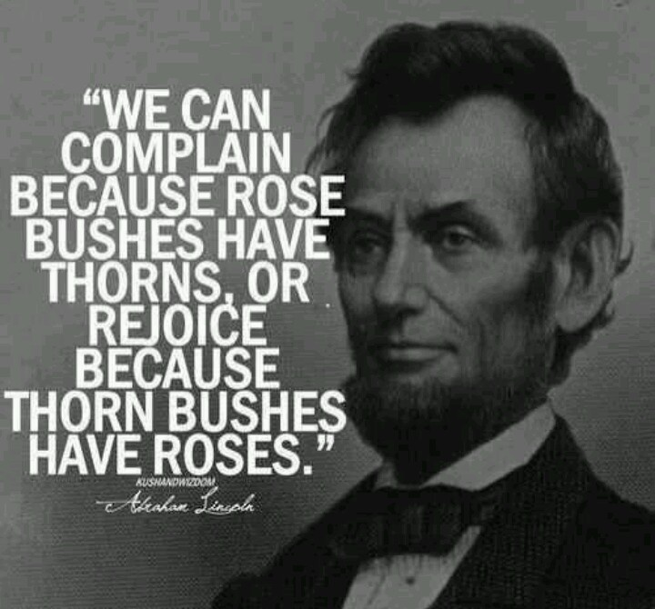 Abe Lincoln Quotes Glamorous 21 Best Abraham Lincoln Quotes Images On Pinterest  Abraham Lincoln