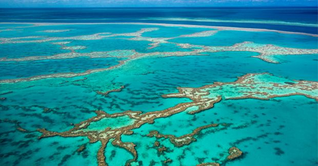 Great barrier Reef: Natural or Human ?