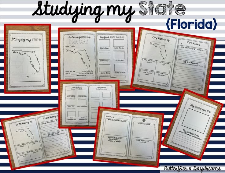 State History Project Studying My State {Florida}