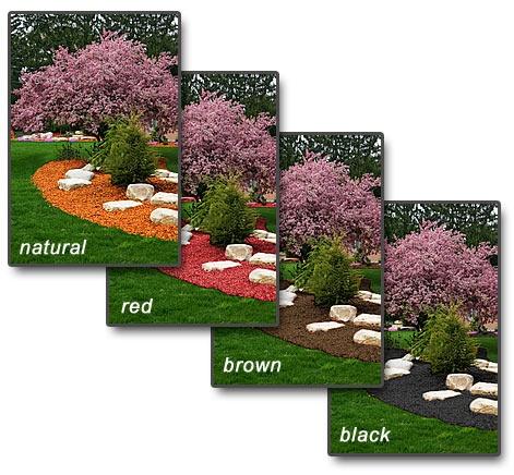 1000 Images About Memorial Garden For John On Pinterest