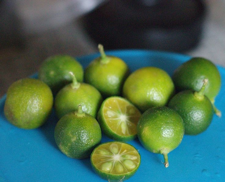 Calamansi limes from Makati Cabalen, the Philippine food market in Tel Aviv central bus station., #nelkytplusblogit#calamansi#citrus#makaticabalen#telaviv#philippinfood####