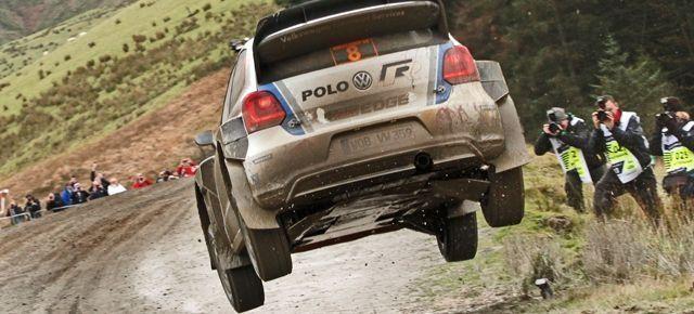 Wales Rally GB 2013 @ Sweet Lamb. Official website.  Tabard #22 Gasmark Media