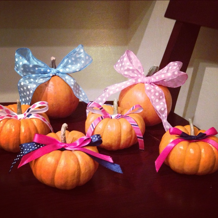 Pink and blue pumpkin babies! Halloween gender reveal party