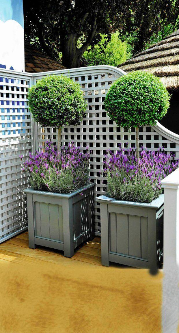 Pin De Mary Quiroz Naranjo En Ideas Para Terrazas Jardines