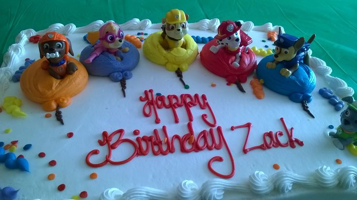 Paw Patrol characters on Costco cake