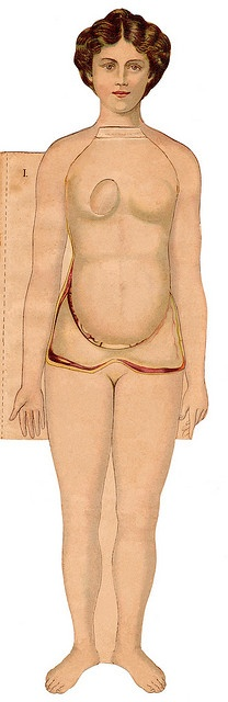 anatomie 1900s a beautiful series of pictures on flickr