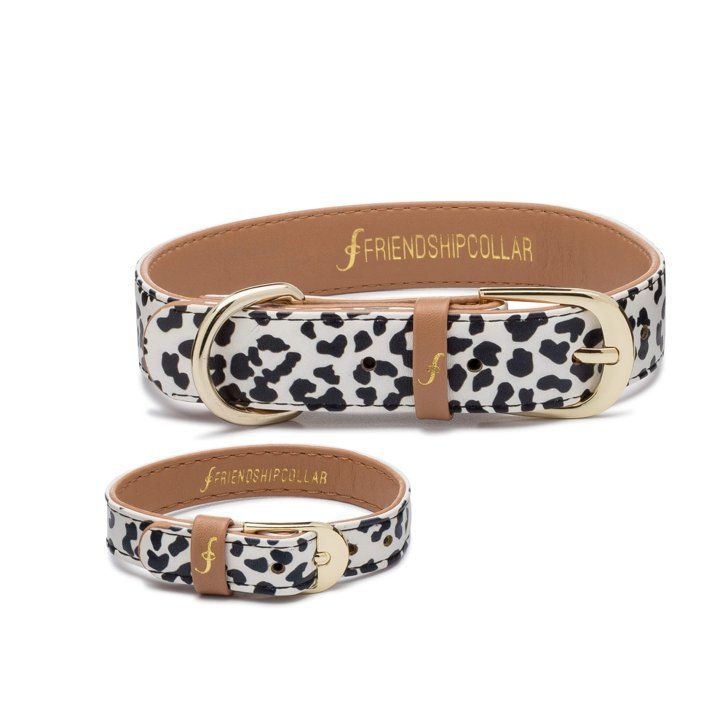 Pin for Later: 14 Chic Dog Collars For the Most Fashion-Forward Pooches  The Wild One Friendship Collars ($35)