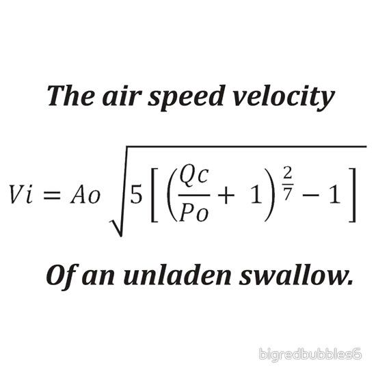 Average Air Speed Velocity Of An Unladen Swallow 71