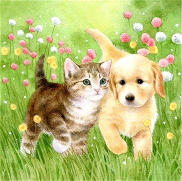 Годиками, картинки собака и кошка для детей
