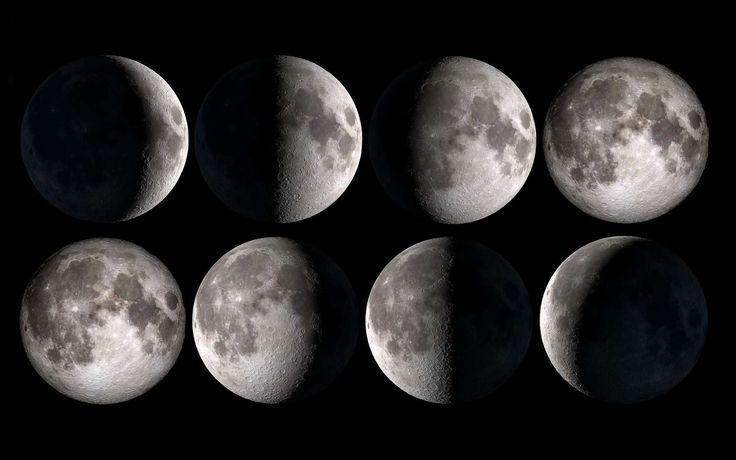 Si nous voyons les fractions éclairées de la Lune changer au cours d'une lunaison, c'est parce que notre satellite naturel tourne autour de la Terre. Tous les 29 jours et demi, l'astre reprend la...