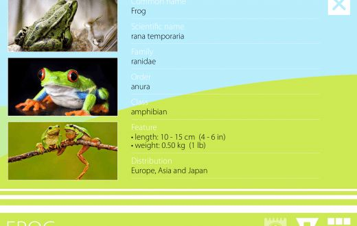 General Knowledge Apps Archives - Best Apps For Kids