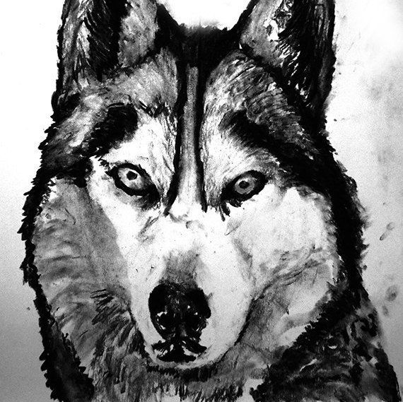 Husky dog art print, black and white, Husky dog,charcoal drawing,Husky portrait wall art print home decor Black Husky… #dogs #etsy #art