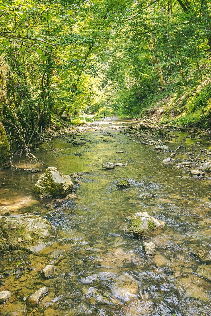 Valea Videi | Bihor in imagini