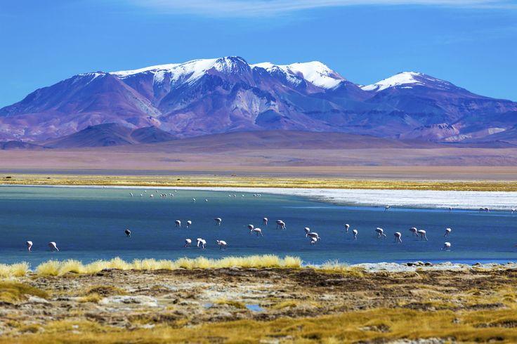 A pesar de que el Desierto de Atacama es el más seco del mundo, este es uno de los lugares más turísticos del país. | 27 Imágenes que te harán querer viajar a Chile inmediatamente