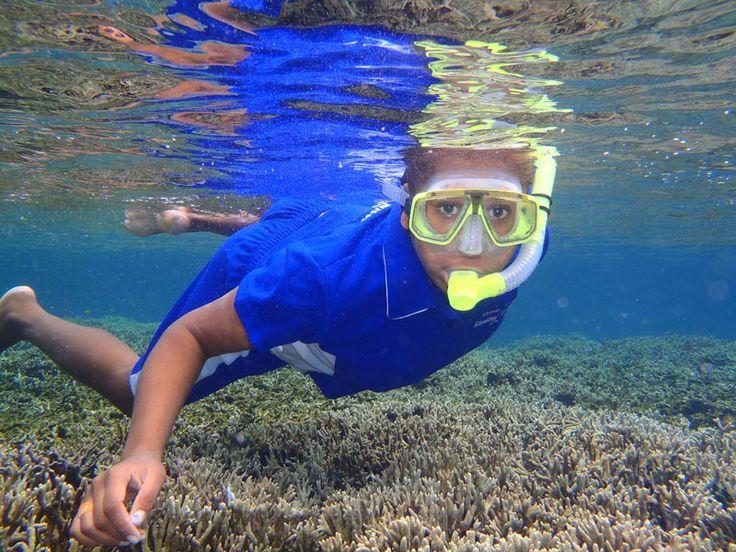 A Real Snorkelling Wonderland, Vanuatu