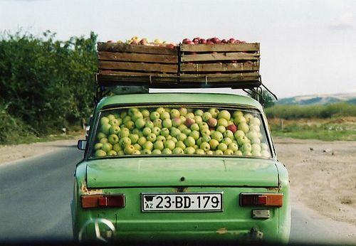 Image result for picking an apple, soviet union