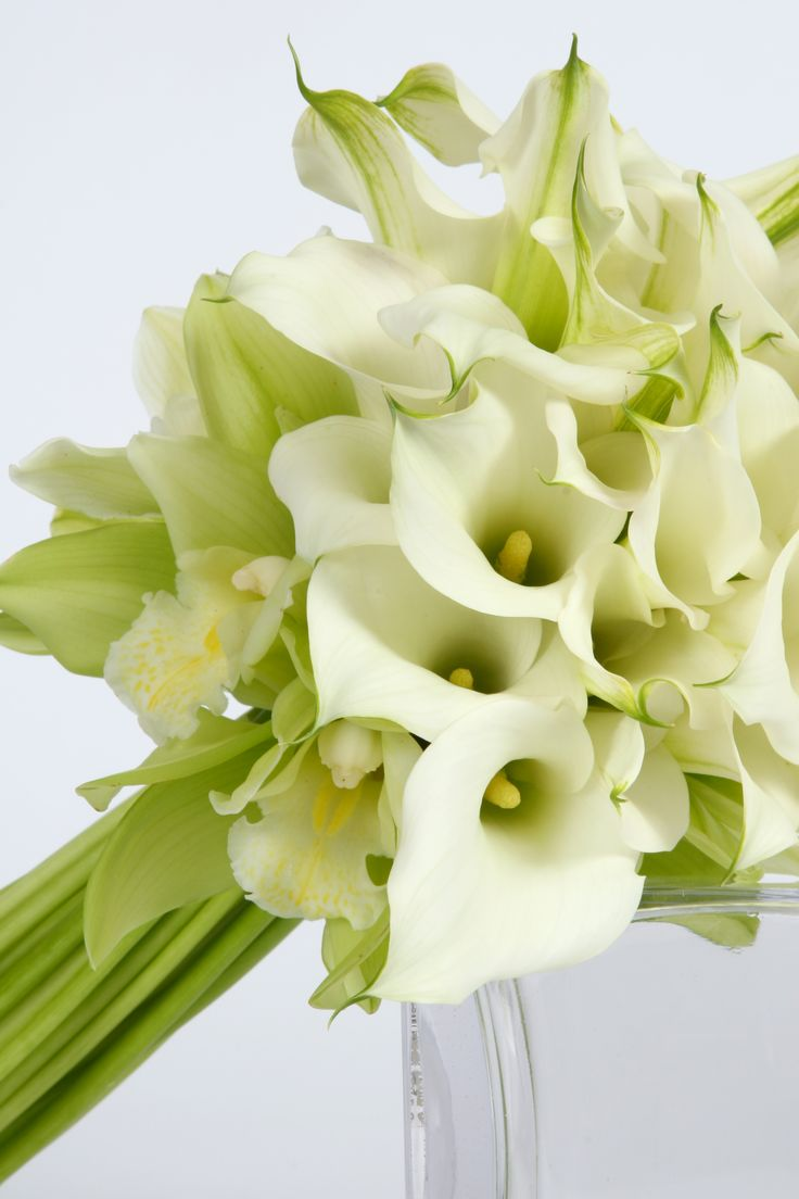 A stunning combination of Calla Lilies and Cymbidium Orchids.