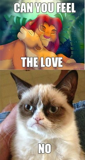 grumpy cat pictures with captions | funny grumpy cat caption photo lion king can you feel the love tonight ...