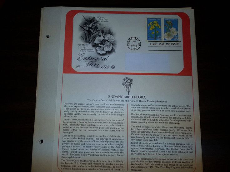 ENDANGERED FLORA U.S. 15cent First Day Cover FDC 1979 by UpstateNYAntiqueVint on Etsy