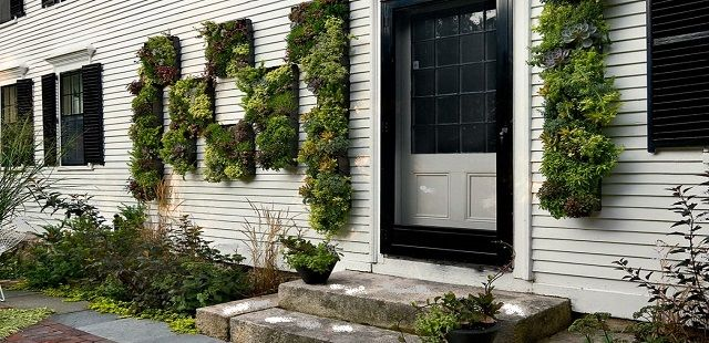 Exterior Walls of House with Vertical Succulent Gardens