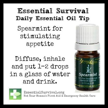 Use spearmint for stimulating the appetite.