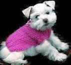 Perro diseño de puente, puente de gato, cachorro Mini SCHNAUZER, ropa para perros pequeños, vestido de perro cachorros taza de té, en rosa, con capullo de rosa y perlas.