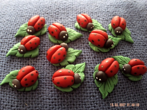 ladybirds  love!