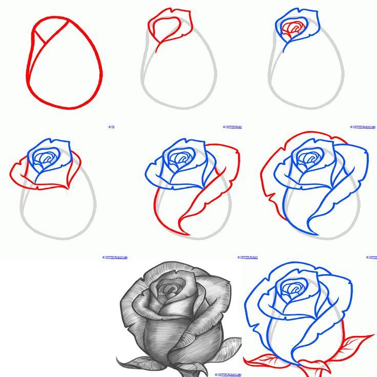 рисунок розы поэтапно фото героев