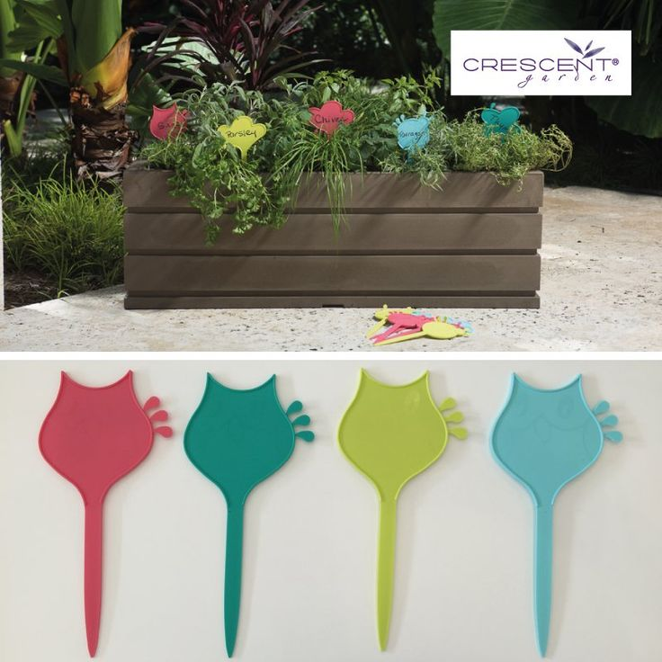 Bright plant markers that have a dual-purpose as watering reminders. These new plant tags are colorful, beautiful and practical. Each plant tag comes with little drops on the side that can be removed to remind you how much you need to water the plant they are identifying. 3 drops, 2 drops or 1 drop for those that need less water like your thyme. #planttags #growingherbs