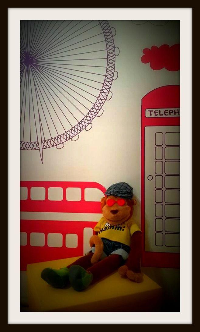 Cool Monkey!...#CME4K Sadece çocuklar (Okul Oncesi - Ilkokul - Ortaokul) için İngilizce dil kursu İzmir