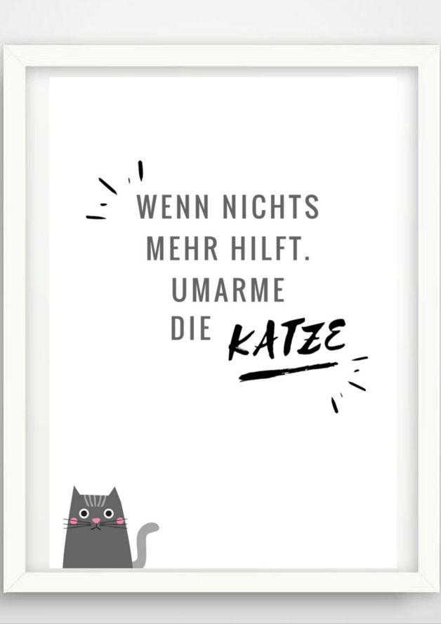"""""""Wenn nichts mehr hilft, streichel die Katze""""   Stimmt es nicht? Katzen beruhigen und helfen IMMER. Isso.  Ein schönes Poster für die Küche, alle Katzenliebhaber, Katzenmamas, das Büro oder..."""