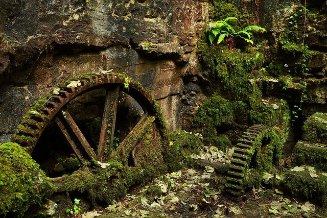 Reclaimed by Nature by Mike Crowle (flickr) Machinery at the gunpowder works, Ponsanooth, West Cornwall. Taken July 4th, 2012.