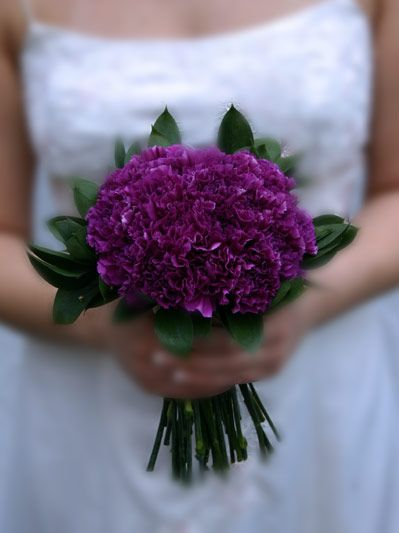 Google Image Result for http://dwymbfinut5ul.cloudfront.net/weddings/galleries/images/carnation/bridal-purple-LG.jpg