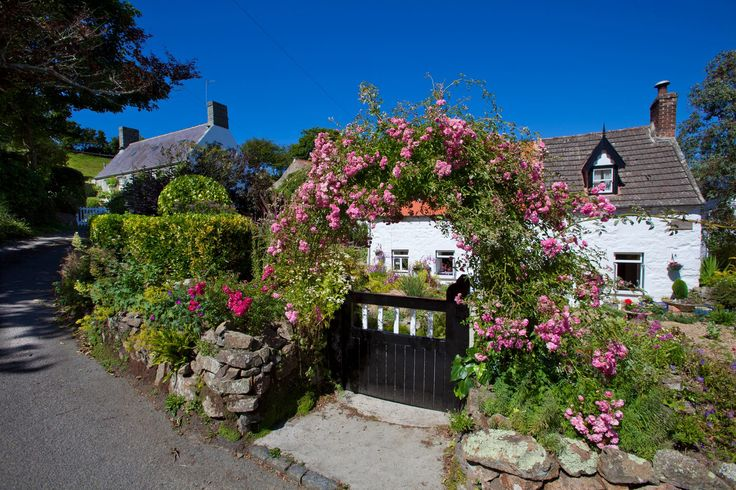 Guernsey Cottage To Rent Home