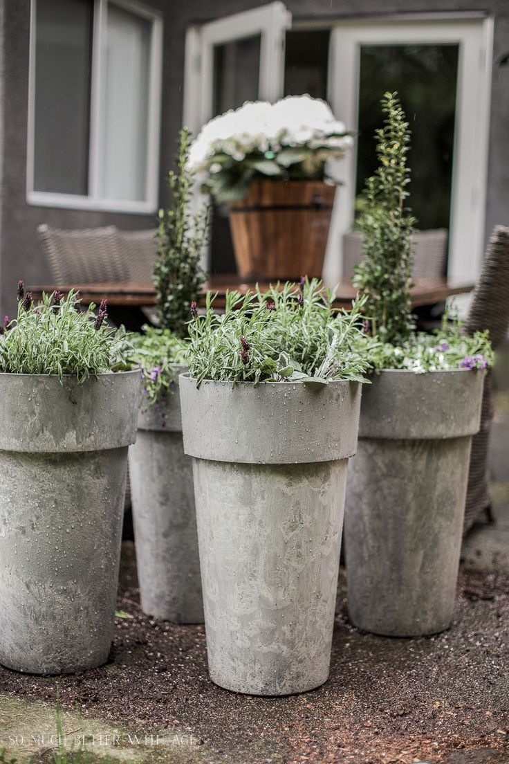 Best 25 large outdoor planters ideas on pinterest for Large garden planter ideas