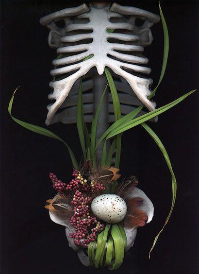 Olga Guerra - scanography - scannography - ScanArt - Scanner Art