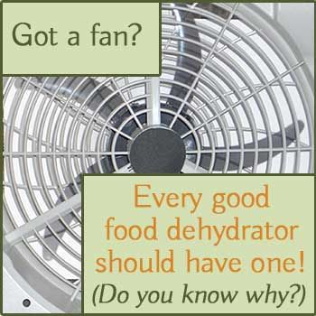"""Every good food dehydrator should have a fan. Do you know why? Check out our post """"5 Tips to Help You Choose the Best Food Dehydrator"""""""
