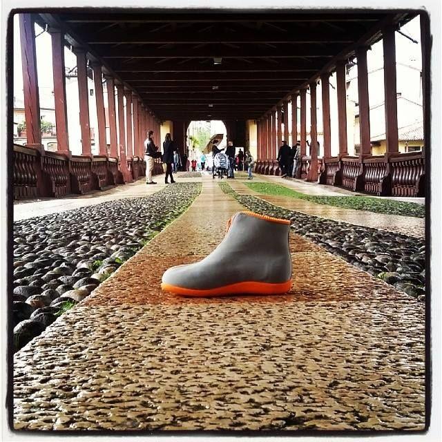 ZIP @ Ponte di Bassano, Bassano del Grappa