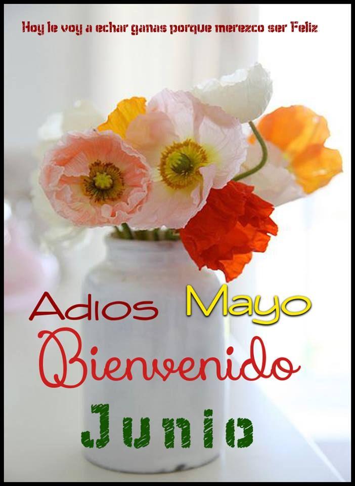 Adis Mayo Bienvenido Junio  Bienvenido junio Bienvenido junio