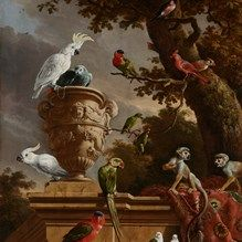 ixxi image bank rijksmuseum art the menagerie melchior d
