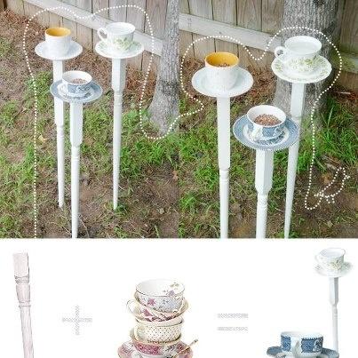 Feeding birds in your garden diy