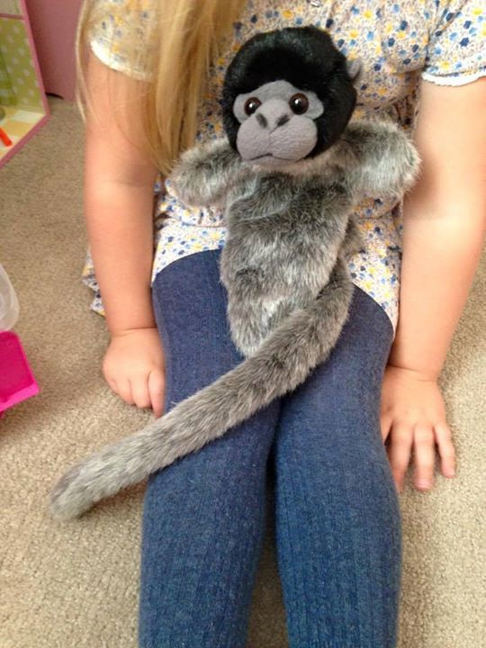 LOST: My daughter's monkey puppet has been misplaced some time on Saturday (17/10/15), either in Chippenham town centre, Halfords & Toys R Us Swindon, Wiltshire. I have phoned these places with no joy. He is very well loved, and has Bella's name on the tag on the inside. PLEASE SHARE & HELP ME RETURN HIM!!