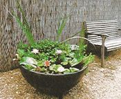 17 Best Ideas About Container Water Gardens On Pinterest