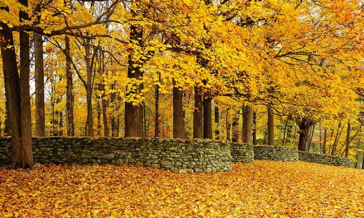 Storm King Wall by Andy Goldsworthy