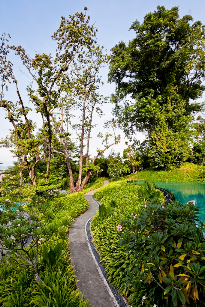 The pathway to happiness at Capella Singapore    #resort #luxury #pool