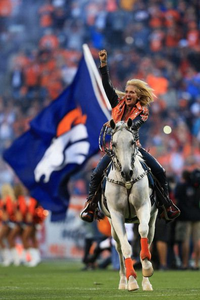 "The NFL is considering flying ""Thunder"" a purebred Abrabian gelding, who is the team mascot for the Denver Broncos, to the Superbowl 2014 in New Jersey. ""Thunder displays his impressive canter from one end to the other"" whenever the Bronco's score at Sports Authority Field Mile High, Denver, Colorado.  CBS Denver"