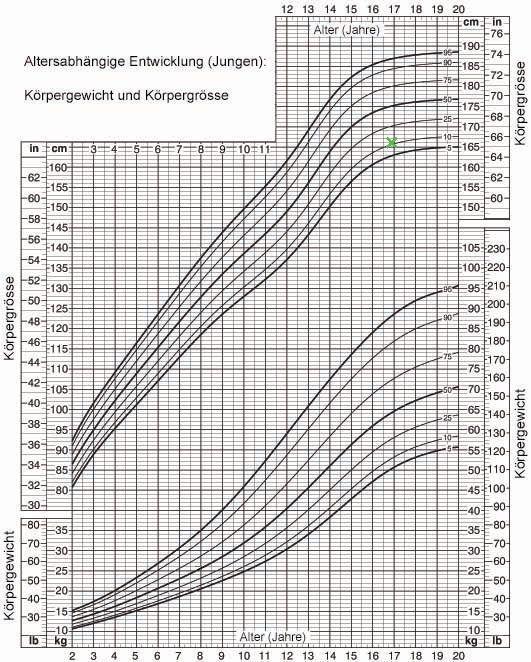 Perzentile Körpergewicht und Körpergrösse Jungen