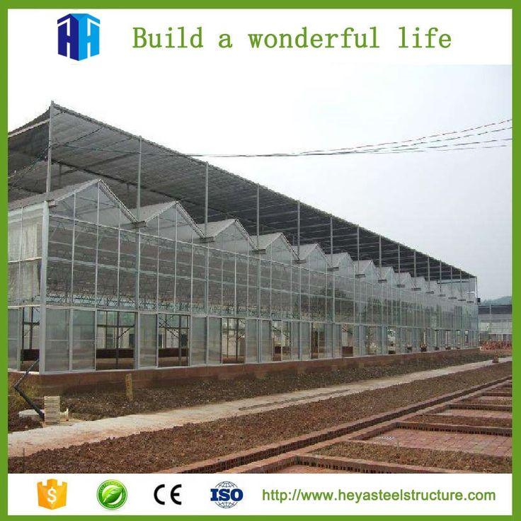 Prefab light steel frame structural greenhouse building