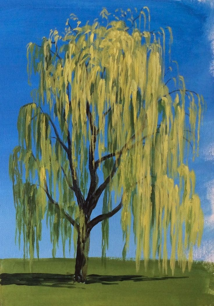 Learn how to paint a willow tree in #acrylics with Jon Cox as part of our #landscapes academy. Now available on ArtTutor.