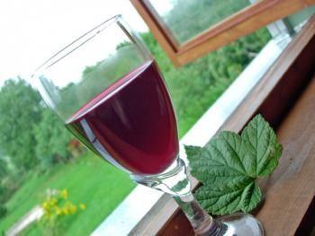 вино из листьев смородины укрепляет сердечно-сосудистую систему
